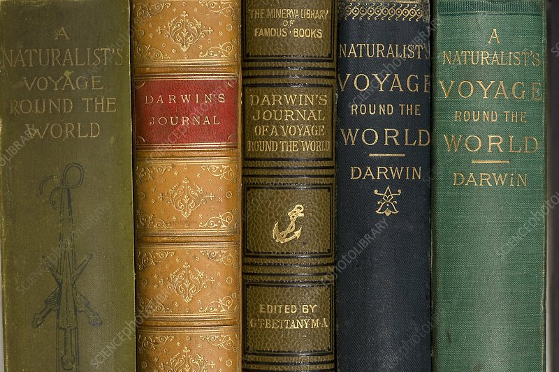 Darwin Voyages of the Beagle book covers