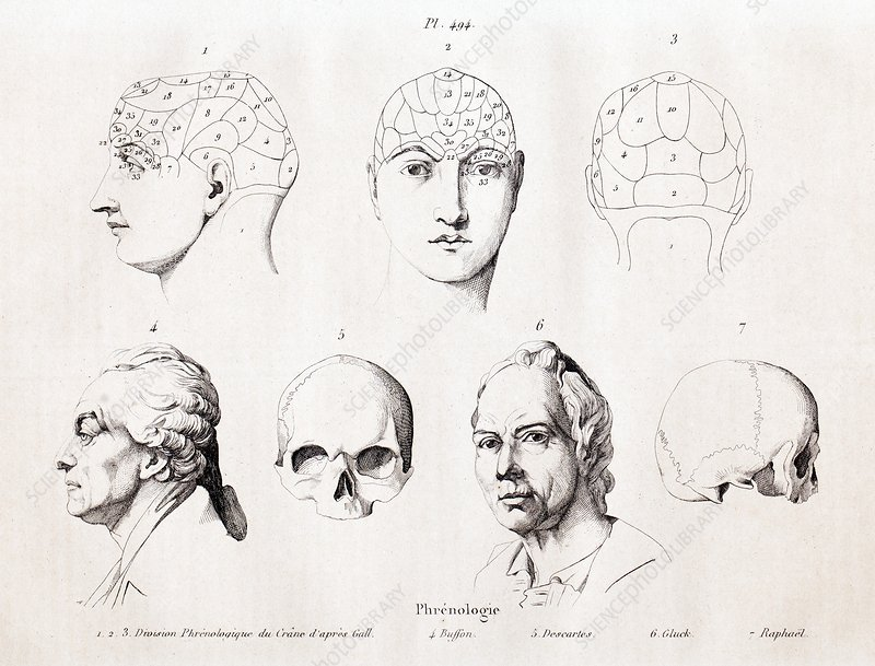 Phrenology of famous heads, 1838
