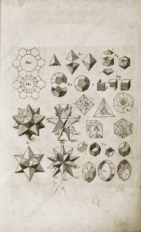 Kepler on polyhedral geometry, 1619