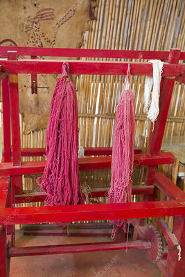 Coloured yarn at cochineal farm, Mexico