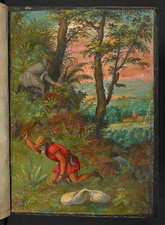 Collecting plants, 16th century