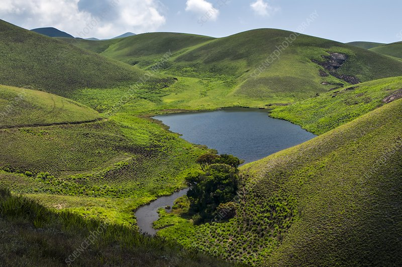 Grassy hills and lake, India