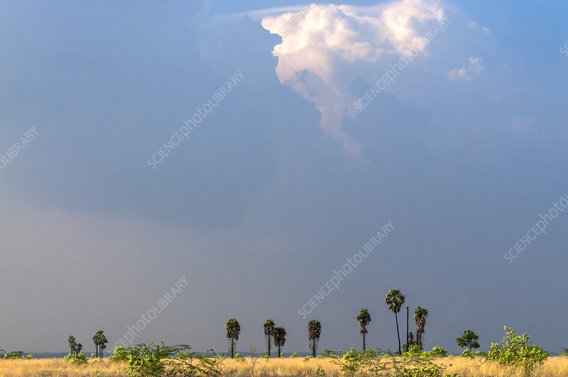 Monsoon clouds over landscape