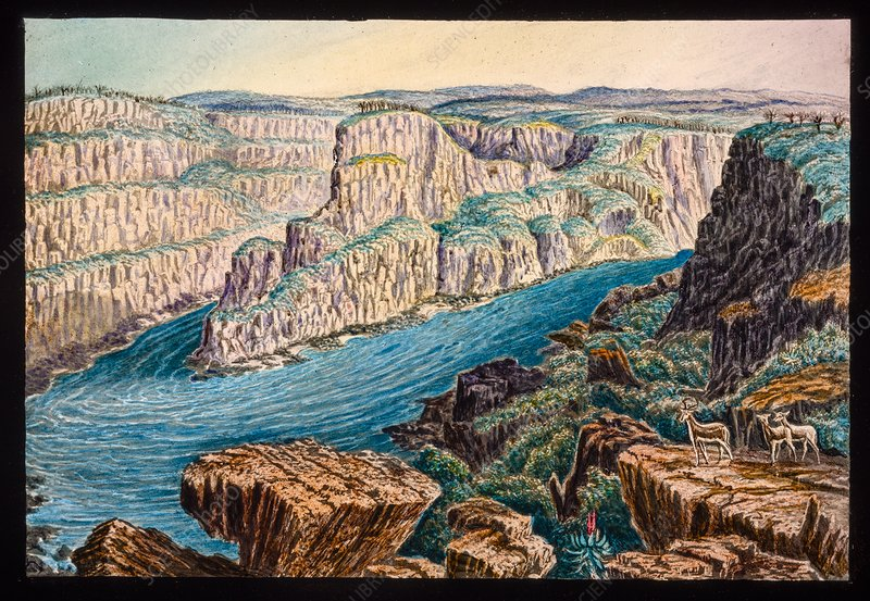 Gorges below Victoria Falls, 19th century
