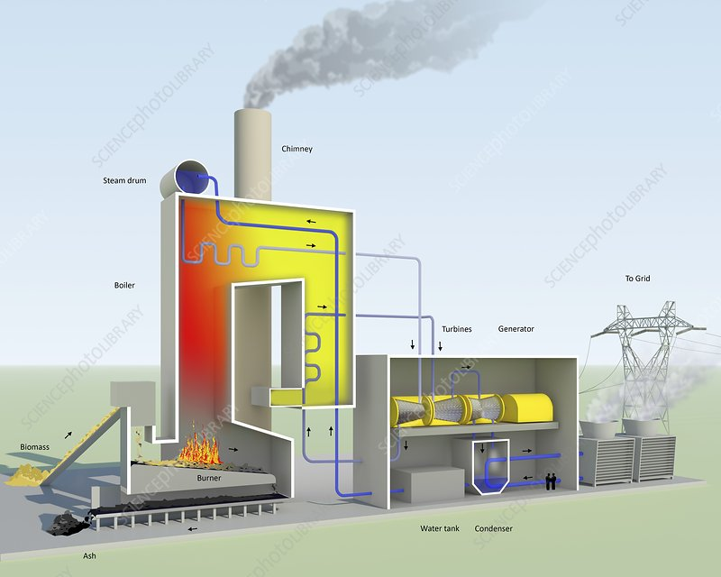 Biomass-fired power station, diagram
