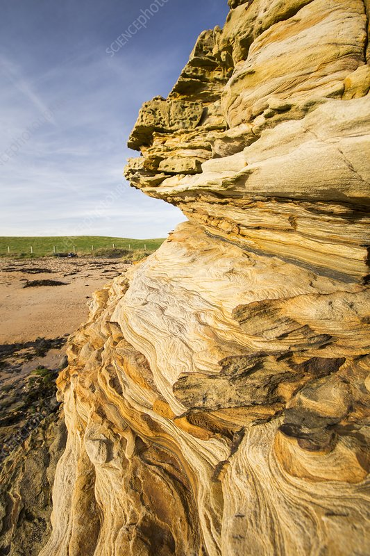 Weathered sandstone sea cliff
