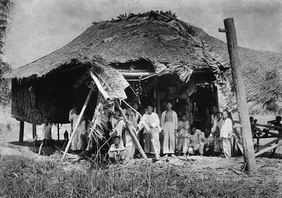 Lepers in the Philippines, early 1900s
