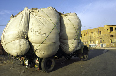 Overloaded lorry, India