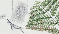 Fern and ancient lizard, illustration