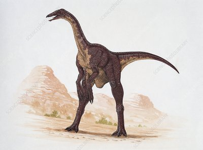 Deinocheirus, illustration