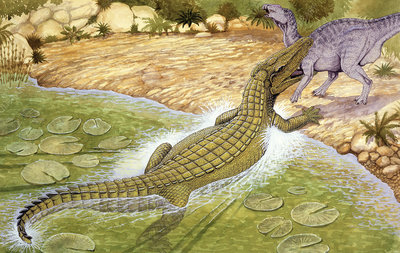 Illustration of Deinosuchus