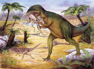 Illustration of Allosaurus hunting