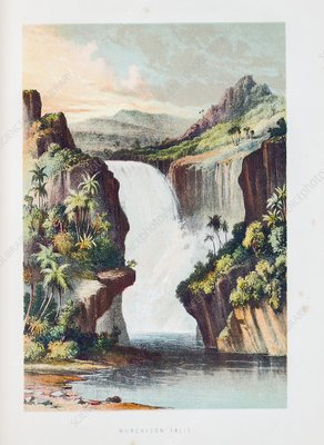 Murchison Falls on the Shire River, 1859