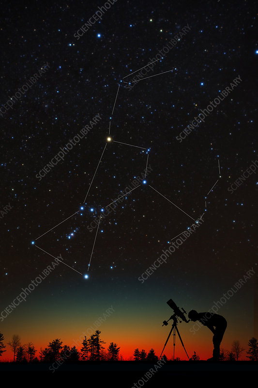 Orion and Silhouetted Stargazer
