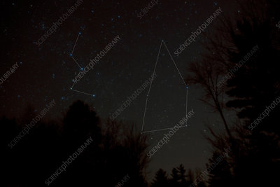 Cassiopeia and Cepheus Constellations