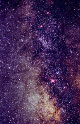 Milky Way Star Fields