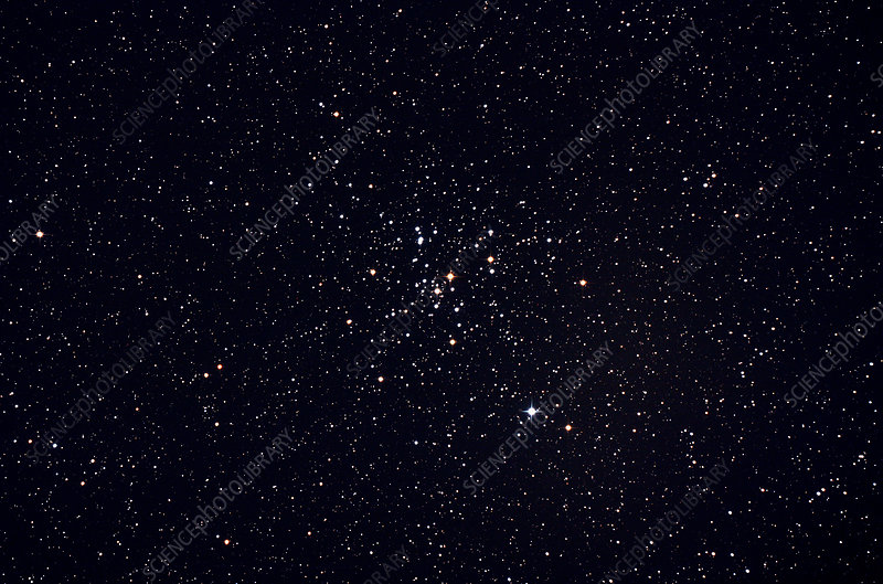 Open Star Cluster M41