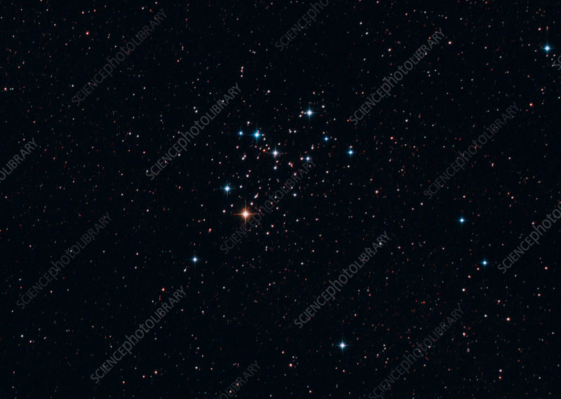 The Butterfly Cluster M6