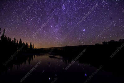 Auriga, Taurus Reflected, St. Mary River