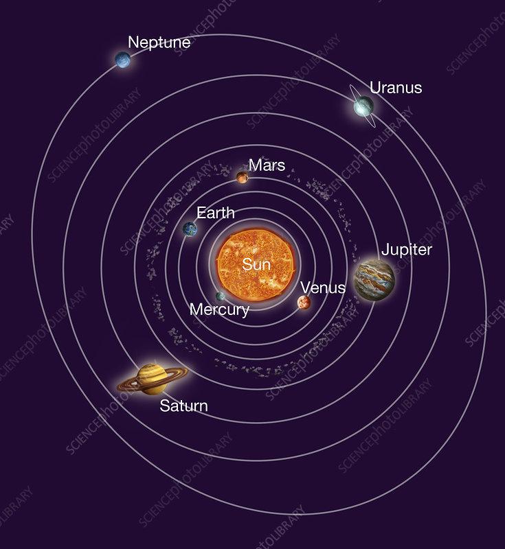 Solar System Orbits  Illustration  5793