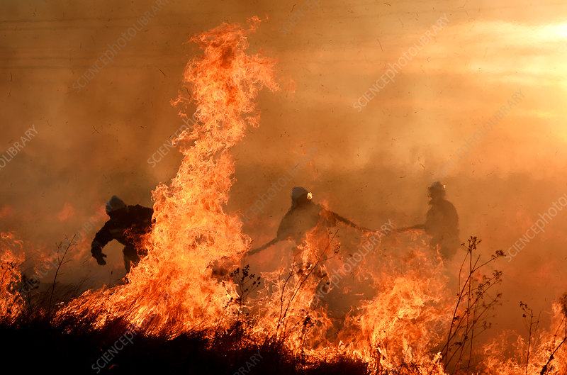Firefighters tackling flames
