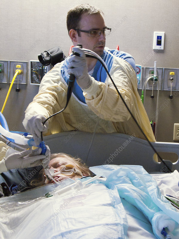 View Endoscopy Procedure: Science Photo Library