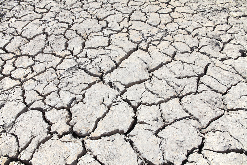 Dry farmland during drought