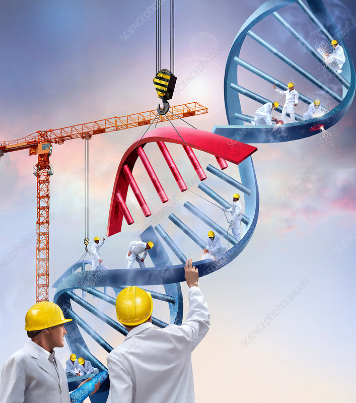 Genetic engineering, conceptual image