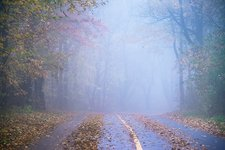 Misty country road, New England, USA