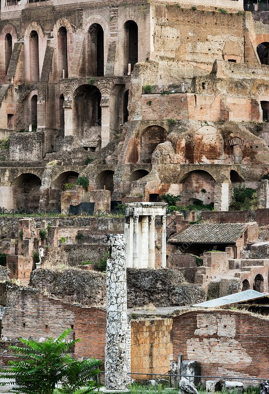 The Forum, Rome, Italy