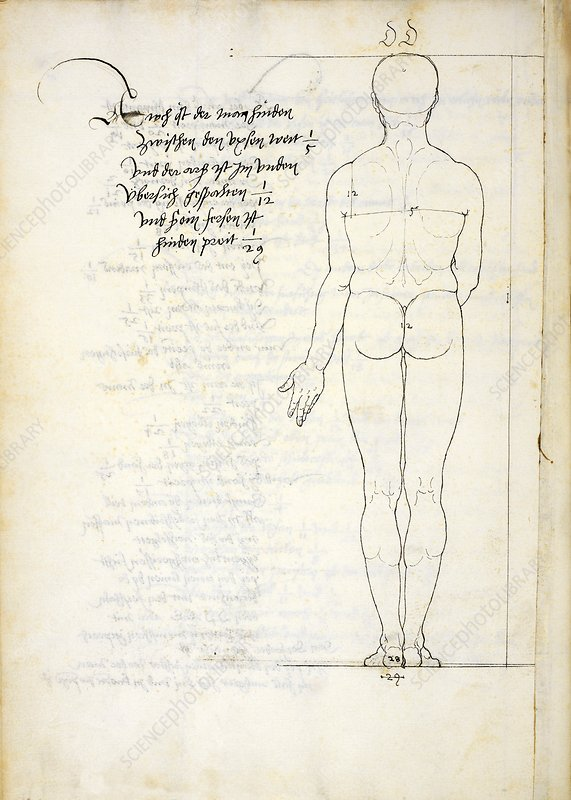 Study in human proportions by Durer - Stock Image - C030