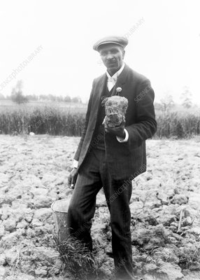George W. Carver, US agriculturalist