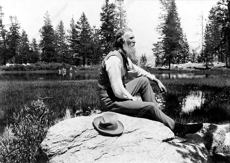 John Muir, US naturalist