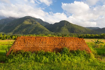 Village brick kiln, Malawi
