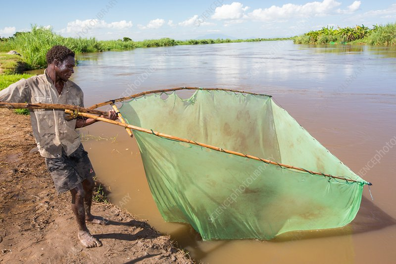 Fisherman, Malawi