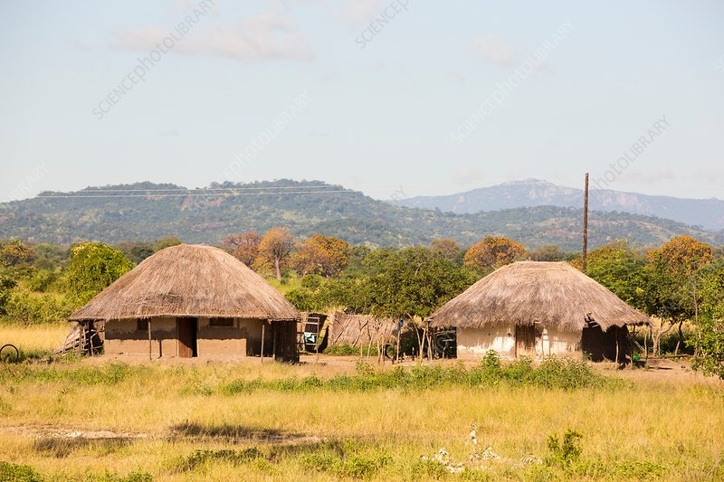 Malawian mud hut house
