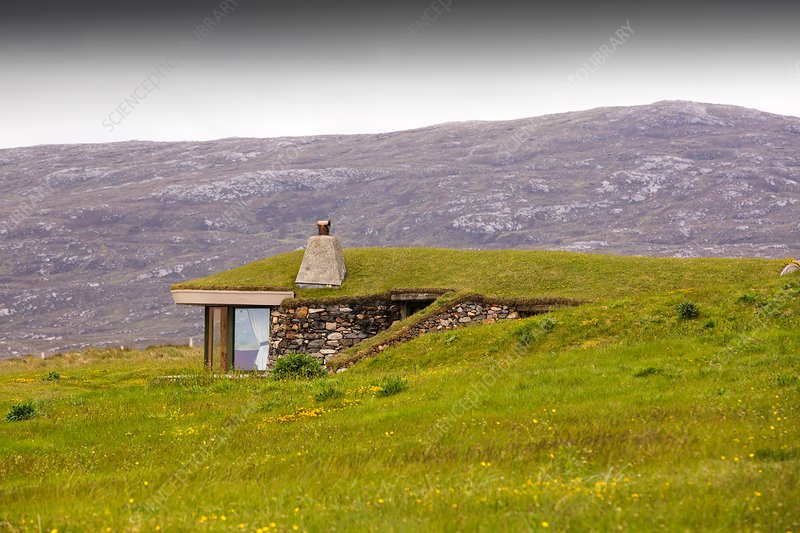 Green-roofed house