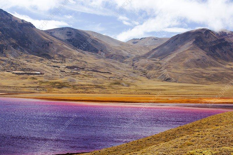 Drought at Laguna Miluni, Bolivia