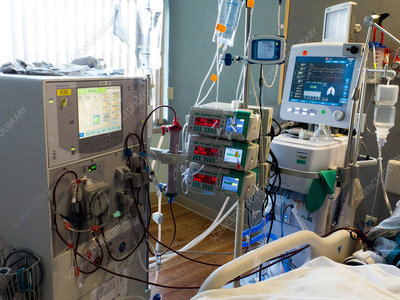 Kidney dialysis in intensive care unit