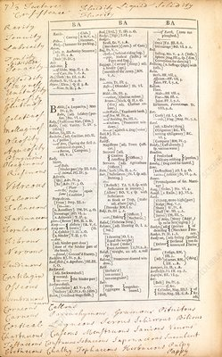 Dictionary entries, 17th century