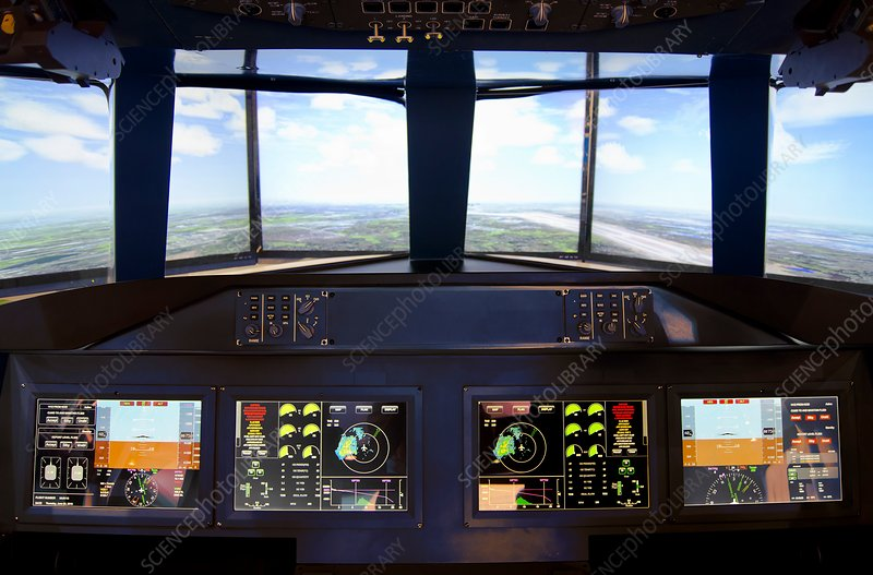 Aircraft flight simulator