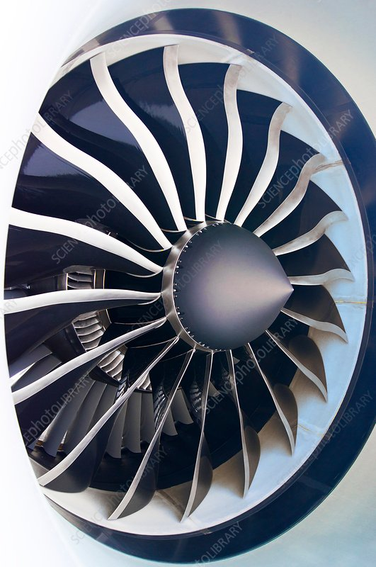 Aircraft engine fan