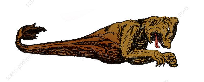 Sea Monster, 16th Century