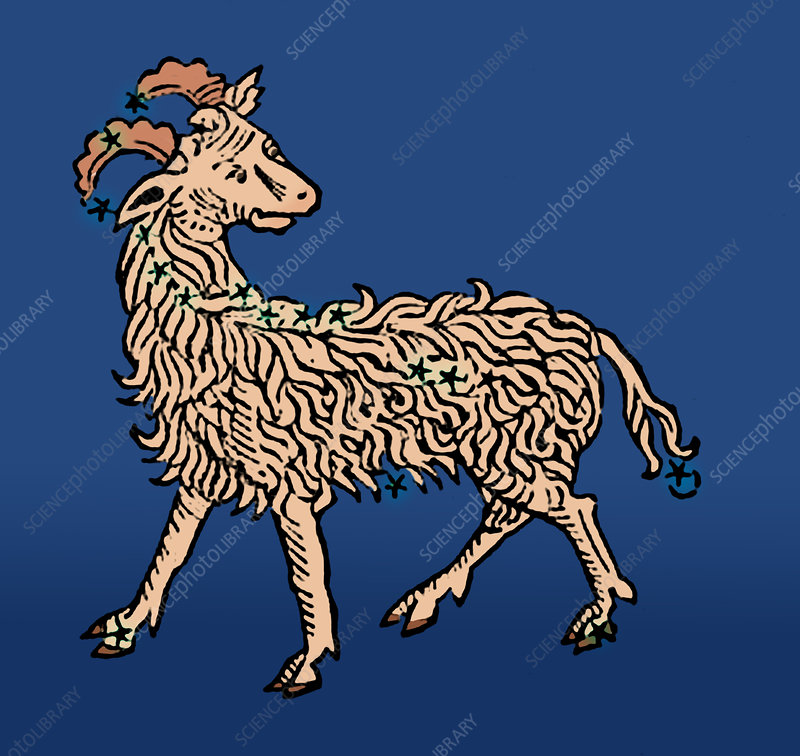 Zodiac Ram, Aries Constellation