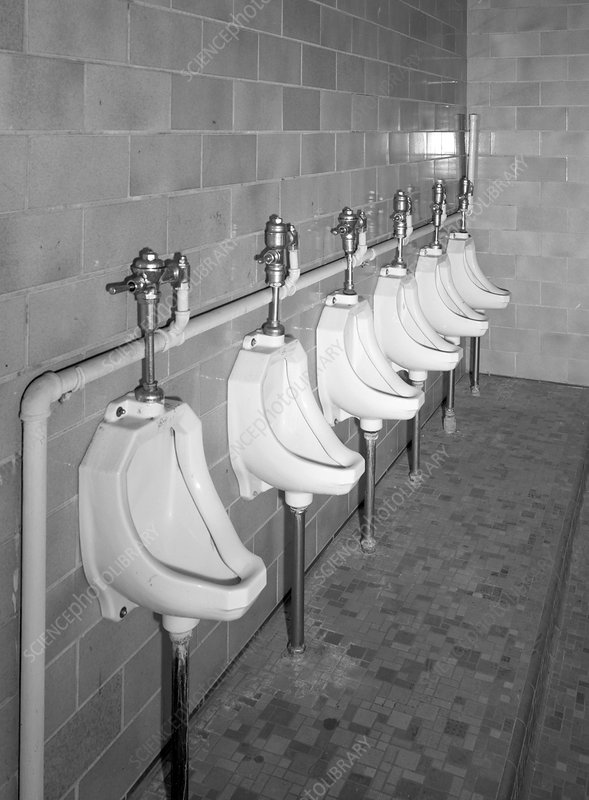 Mens Room Urinals, 20th Century
