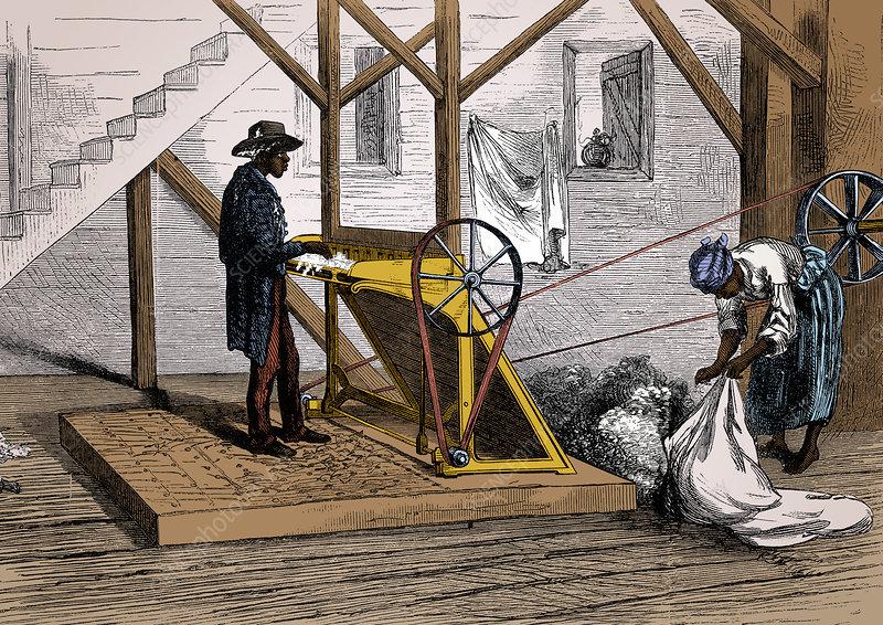 Cotton Gin, 19th Century