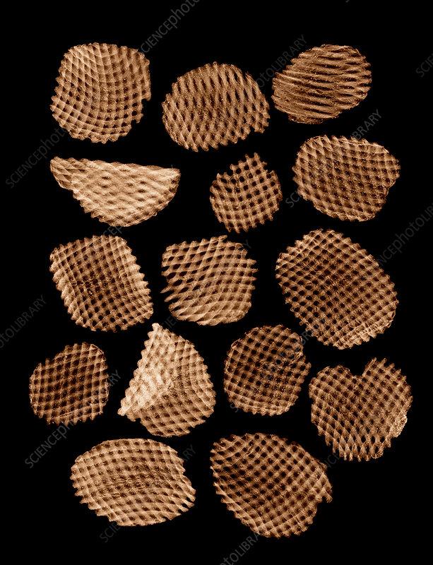 Potato chips, X-ray