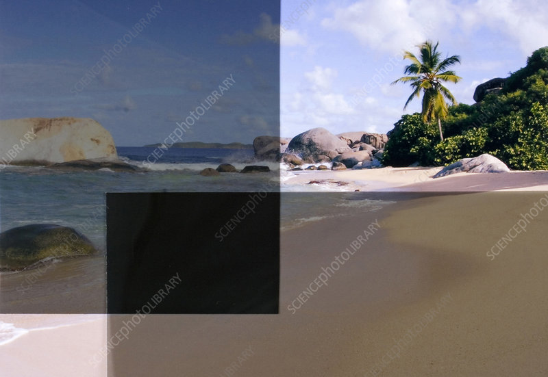 Beach with Polarizing Filters