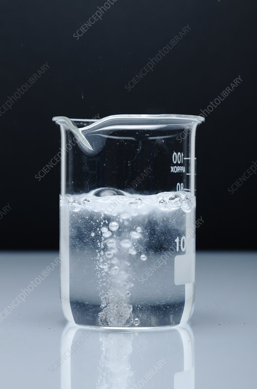 Calcium Reacts with Water, 1 of 4