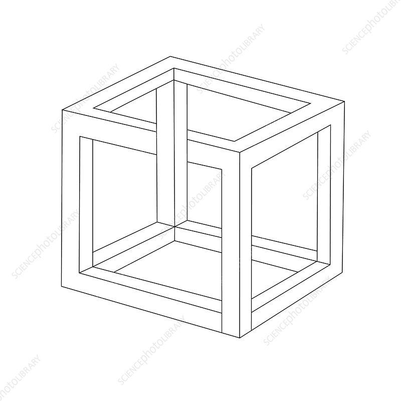 Optical Illusion, Necker Cube, Illustration